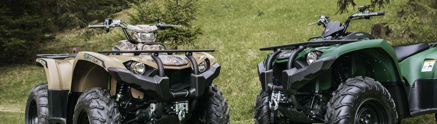 quads kaufen neu